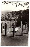 SATUL MOISEI MONUMENTUL EROILOR SCULPTOR GHEZA VIDA, Circulata, Fotografie