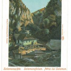 4706 - BRASOV, Romania - old postcard - used - 1903, Circulata, Printata