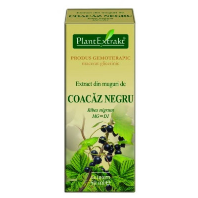 Extract muguri coacaz negru 50 ml - Plant Extract TM foto