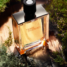 Parfum Original Hermes - Terre D`Hermes Tester