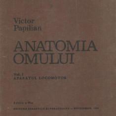 AS - PAPILIAN VICTOR - ANATOMIA OMULUI. VOL.1 - APARATUL LOCOMOTOR