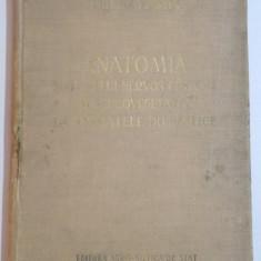 ANATOMIA SISTEMULUI NERVOS CENTRAL SI NEUROVEGETATIV LA ANIMALELE DOMESTICE de V. GHETIE , I. TH. RIGA SI E. PASTEA , 1956