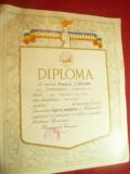 Diploma Cantarea Romaniei Premiul I Pictura Etapa Judeteana