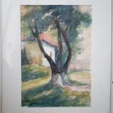 Petru Bicer acuarela pictura tablou semnat pictor, Peisaje, Altul