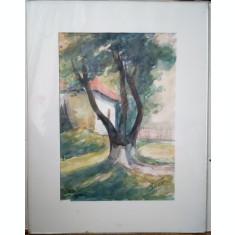 Petru Bicer acuarela pictura tablou semnat pictor