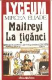 Mircea Eliade, Maitreyi, La tiganci
