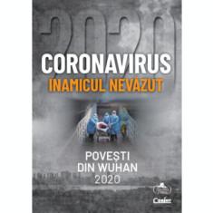 Coronavirus 2020 - Inamicul nevăzut