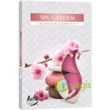 Set Lumanari Tip Pastila Aroma SPA Garden 6 buc.