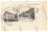 1888 - SEBES ALBA, Litho, Romania - old postcard - used - 1902