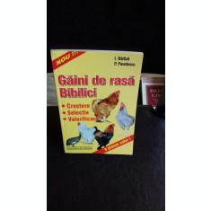 GAINI DE RASA BIBILICI - I. BARBAT
