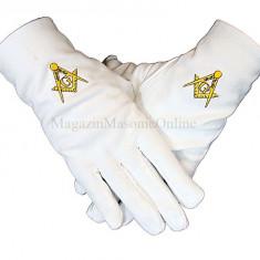 Manusi masonice albe cu simbol galben brodat