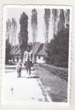bnk foto - Ploiesti - Parcul Bucov - 1975
