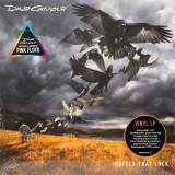 David Gilmour Rattle That Lock 180g LP (vinyl)