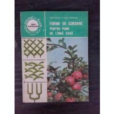 FORME DE COROANE PENTRU POMII DE LANGA CASA - IOAN MILITIU