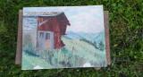 Peisaj de munte vechi pânză lipită pe carton