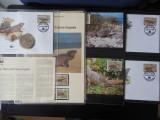 Serie timbre fauna WWF animale pasari nestampilat reptile iguane filatelice