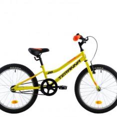 Bicicleta Copii DHS Junior Teranna 2001 Galben 20