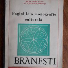 Branesti, monografie culturala / R4P2F