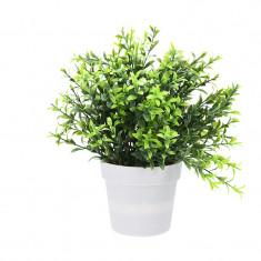 Planta Artificiala cu frunze ascutite verde inchis si deschis H 24 cm in ghiveci plastic alb 8.5x9cm