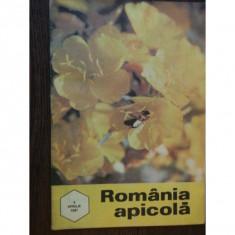 REVISTA ROMANIA APICOLA NR.4/1997