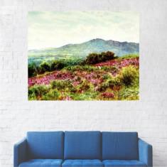 Tablou Canvas, Camp cu Flori Roz - 20 x 25 cm