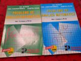 PROBLEME DE ANALIZA MATEMATICA Vol.I si II*Ion Petrica*Emil Constantinescu