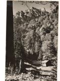CPIB 15921 CARTE POSTALA - MASIVUL CEAHLAU, RPR