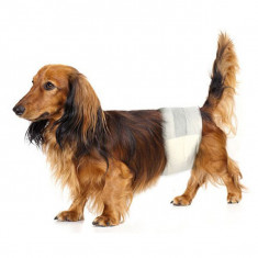 Scutece pentru câini S-M, 12 buc