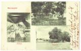 5236 - OCNA-MURES, Alba, Mine, Romania - old postcard - used - 1906