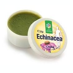 Crema Echinaceea Santo Raphael 20gr Cod: 4055