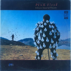 Pink Floyd - Delicate Sound Of Thunder (2 LP - Rusia - VG)