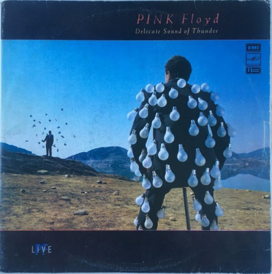 Pink Floyd - Delicate Sound Of Thunder (2 LP - Rusia - VG) foto