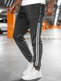 Pantaloni de trening grafit Bolf JX9507
