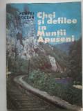 Chei si defilee din Muntii Apuseni - Pompei Cocean