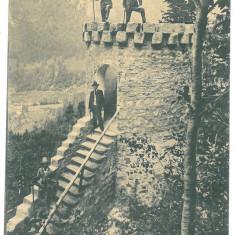 2232 - TUSNAD, Harghita, Litho, Romania - old postcard - used - 1901, Circulata, Printata