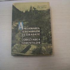 AMELIORAREA TERENURILOR DEGRADATE SI CORECTAREA TORENTILOR I. MIULESCU