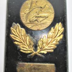 Placheta, Metal pe lemn, Romania 1949: Natatie