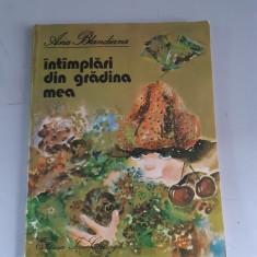 Ana Blandiana - Intimplari din gradina mea - Ilustratii Doina Botez