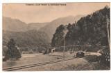 SV * Calea Ferata ALBIOARA - VALCEA  *  drezina pe sine  *  tunel feroviar