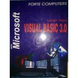 Visual Basic 3.0