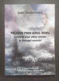 PELERIN PRIN IADUL ROSU - UN OFITER ROMAN IN GULAGUL SOVIETIC - IOAN TEODORESCU