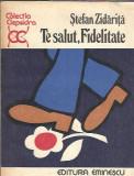 Te salut, Fidelitate - Stefan Zidarita