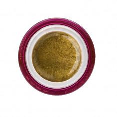 Gel color pentru unghii Gold, 5 grame