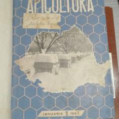 Colectia revistei Apicultura – 1963