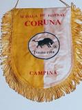 "Fanion fotbal - Scoala de Fotbal ""CORUNA"" Campina"