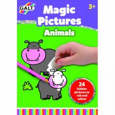 Carte Razuim si Coloram Magic Pictures