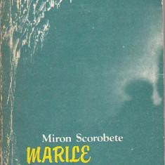 MIRON SCOROBETE - MARILE VACANTE