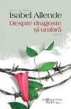 Despre dragoste si umbra - Isabel Allende