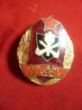 Insigna Pompieri - 15 Ani FCPI ,metal si email ,h=4 cm