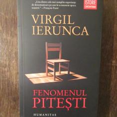 FENOMENUL PITESTI -VIRGIL IERUNCA( NOUA , HUMANITAS ), 2018